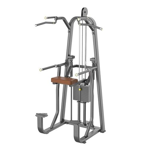 SPORTS LINKS 1009 ASSISTED DIPCHIN STRENGTH EQUIPMENTS_2