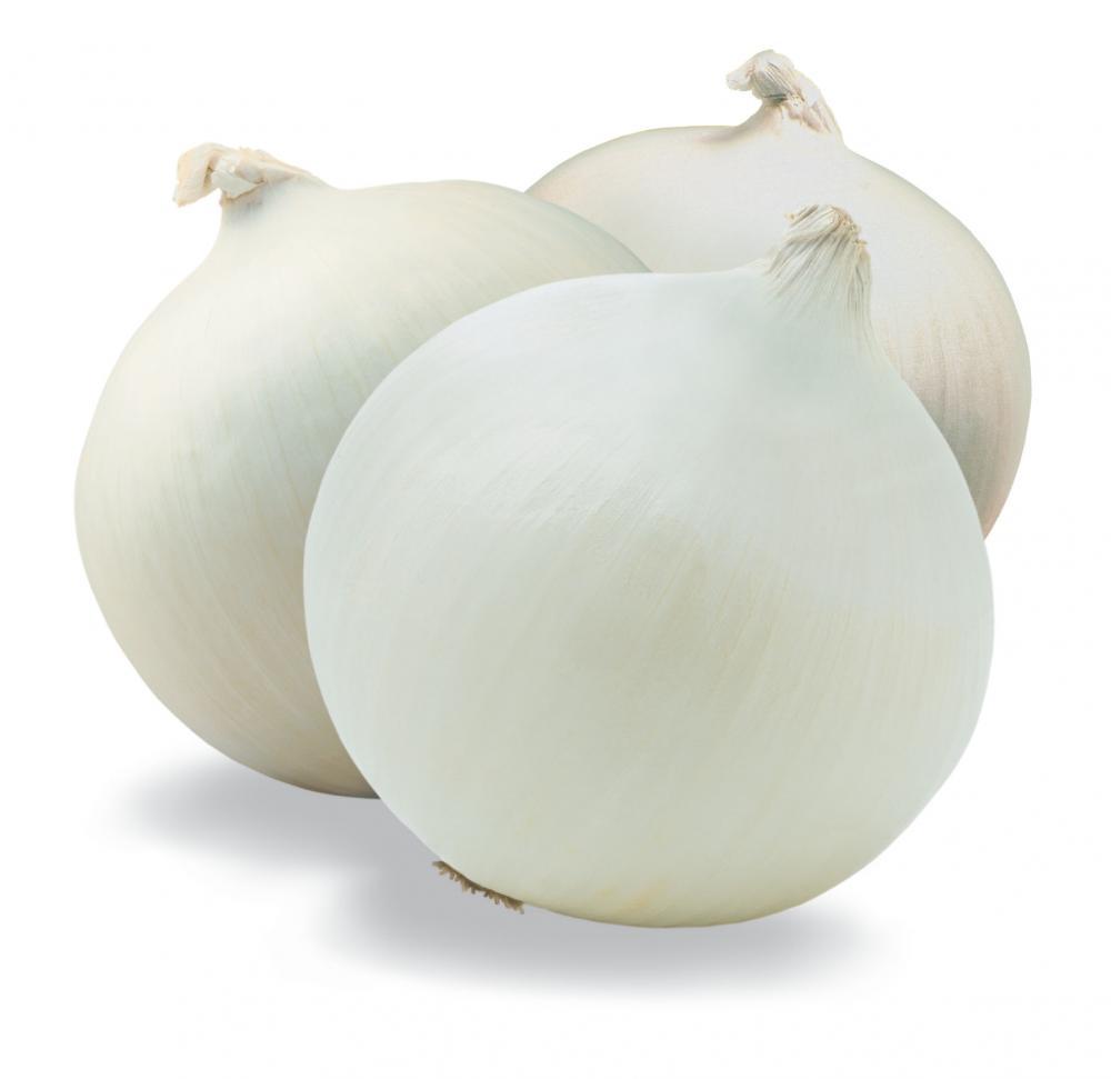WHITE ONION_2