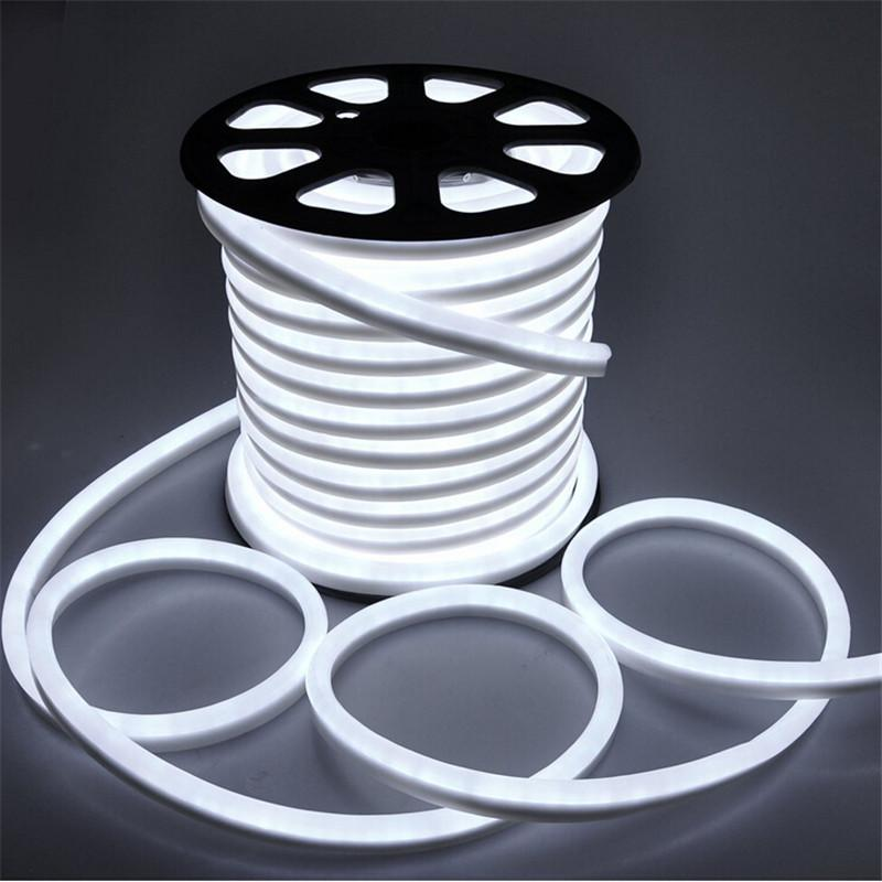 EG-NVH24W-F11524 LED Neon Flex_2