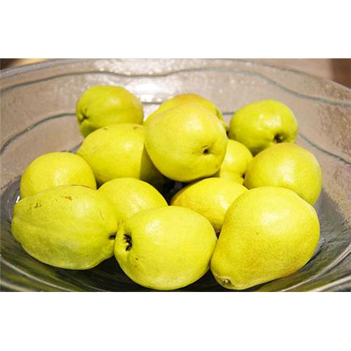 Fresh Pears_3