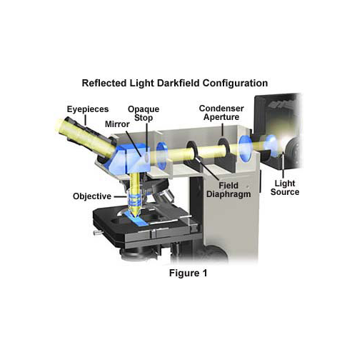 Microscope Components for Reflected Light Applications_2