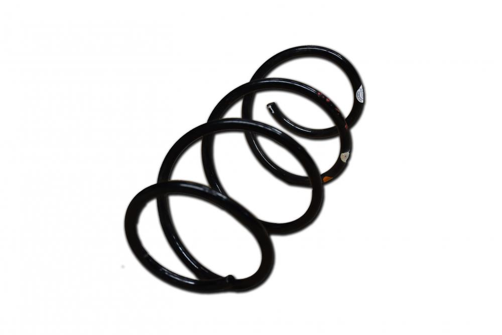FRONT COIL SPRING_2