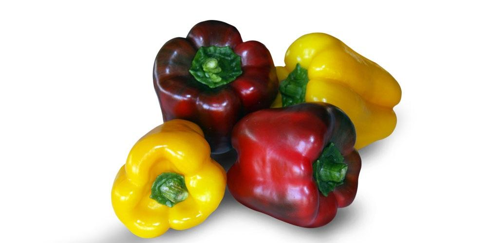PEPPERS, CHILES_9