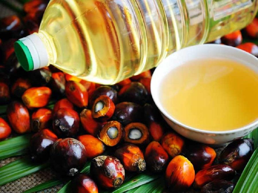 Palm Oil and Vegetable Oils_2