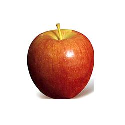 Fresh Apples_4