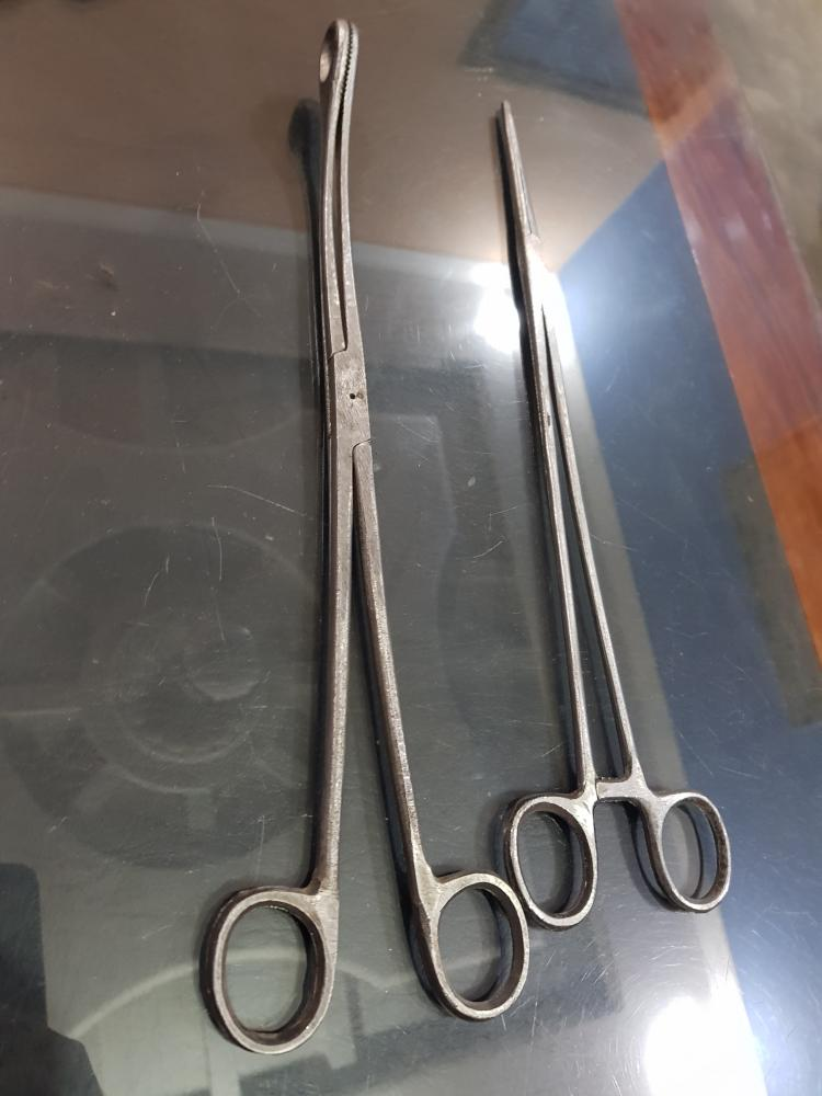Kelly's Placental Forceps_2