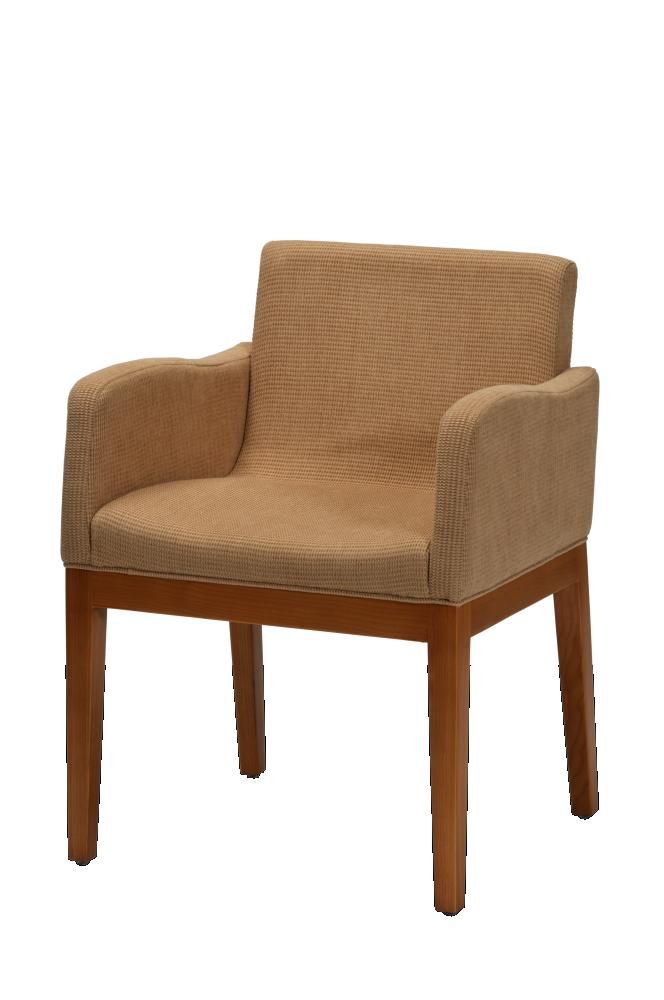 Wooden Upholstered Chair_5