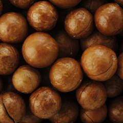 Macadamia Nuts from Australia_5
