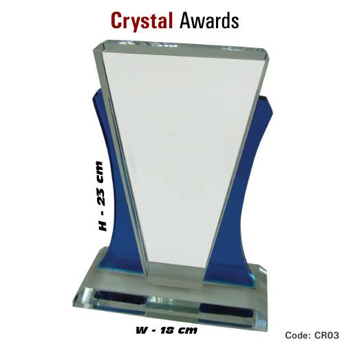 Customized Crystal Trophy_11