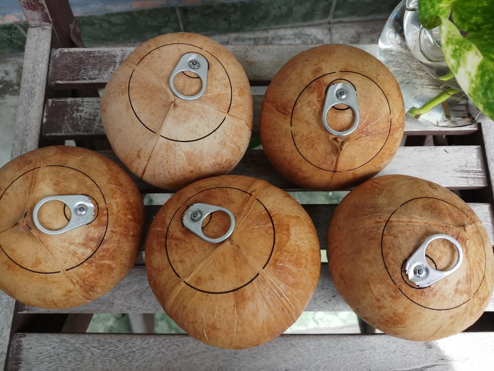 Fresh coconut_2