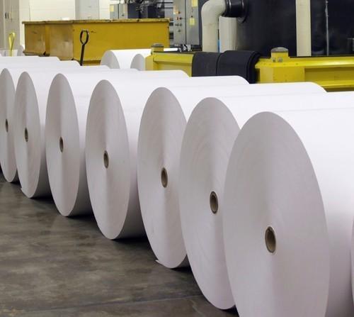 Buy Newsprint paper Roll- Newsprint roll_2