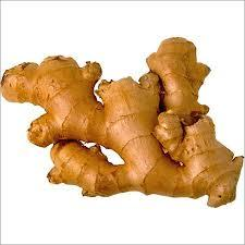 Certified usda eu Organic Ginger Finger powder granuels_2