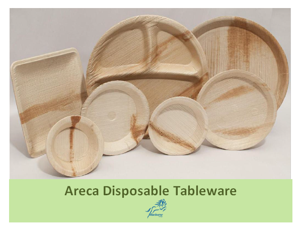 Biodegradable Disposable Tableware Cutlery Plates Spoon Fork Bowl Wholesale_3