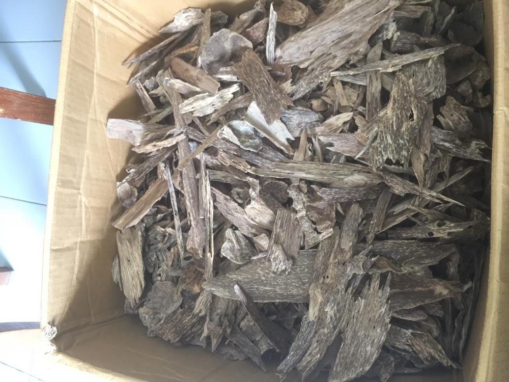 AGARWOOD CHIPS or OUD CHIPS_3