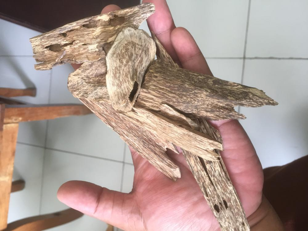 AGARWOOD CHIPS or OUD CHIPS_4