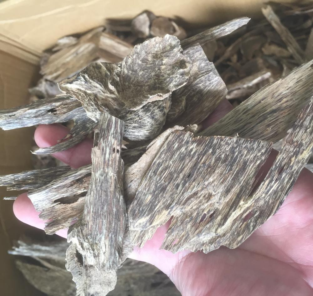 AGARWOOD CHIPS or OUD CHIPS_7