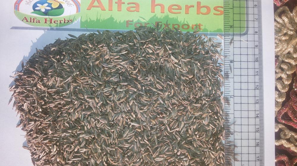 Caraway seeds_2