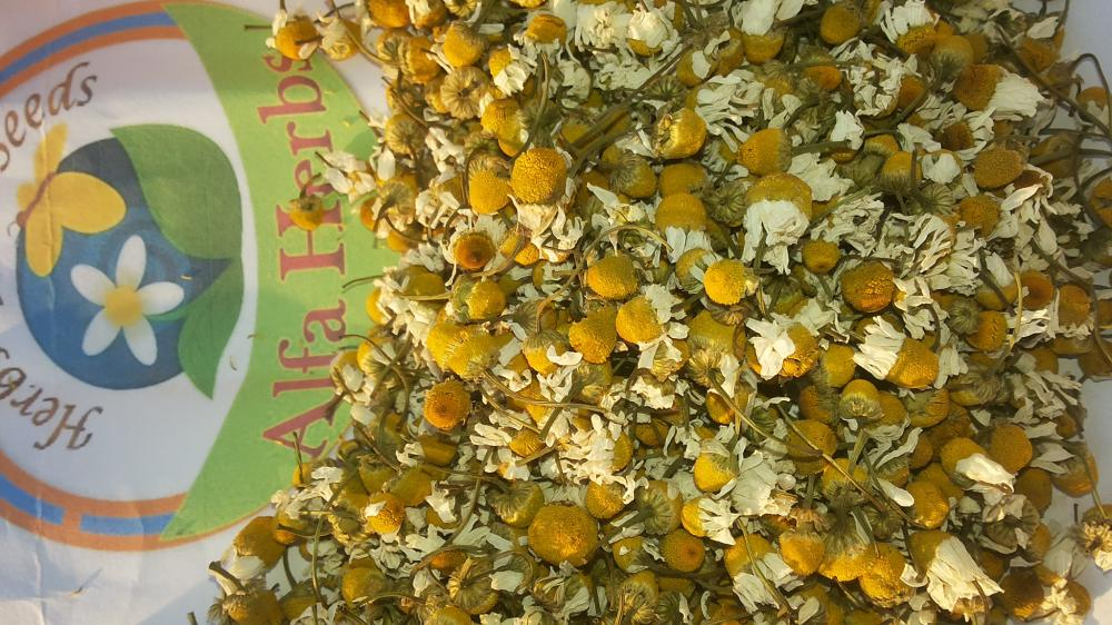 Chamomile flowers dried_2