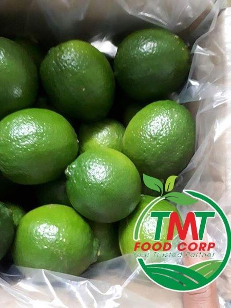 VietNam Fresh Seedless Lime_6