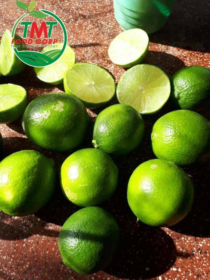 VietNam Fresh Seedless Lime_2