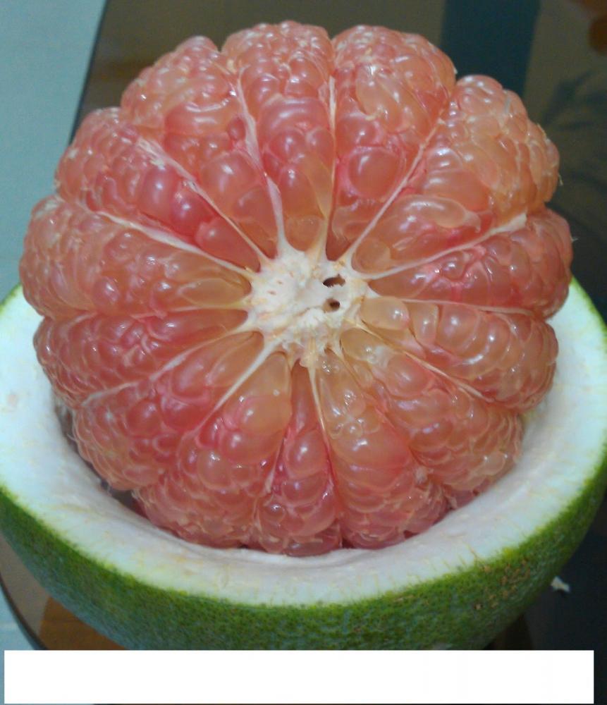 VietNam Fresh Pomelo Fruit_7