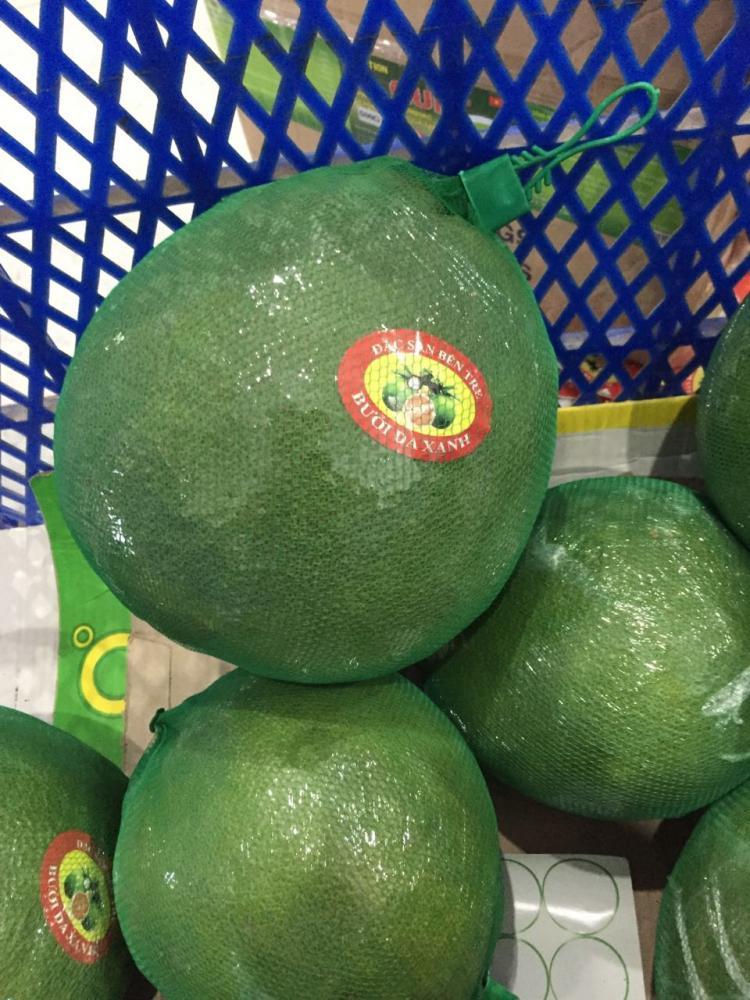 VietNam Fresh Pomelo Fruit_3