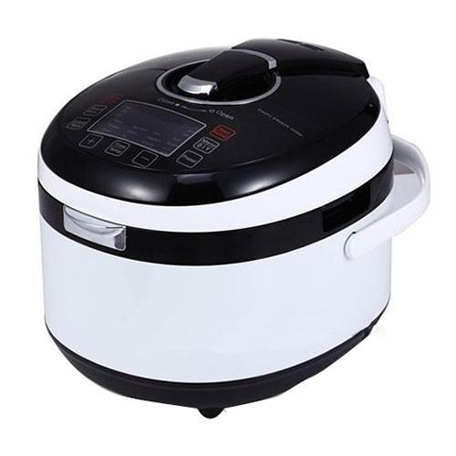 FS501A Pressure Cooker_2