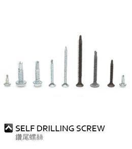 Self Drilling Screw_2
