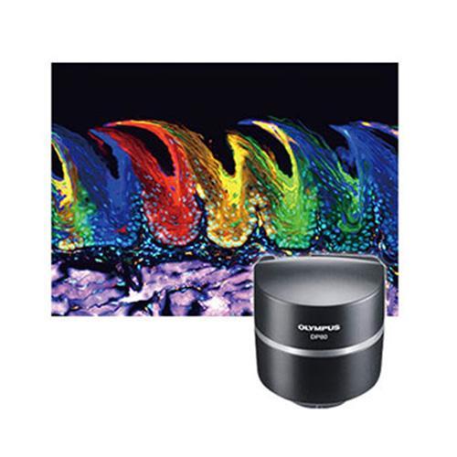 DP80 Color Camera_2