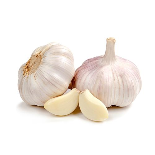 Garlic_2