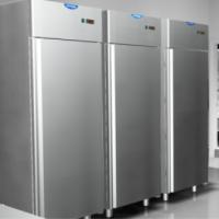 Frezzer refr  cabinet eko 1400 lt gn 2 1 pz  af14ekombt 203*140*78