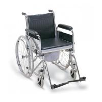 Wheel chair+zoo-19b