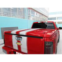 SILV STD BED FANCY AB DESIGN FIBERGLASS TONNEAU COVER FCSL1565075