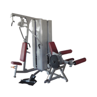 Strength equipments fm – 3004