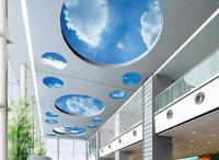 Decorative Sky Ceiling Panel_5