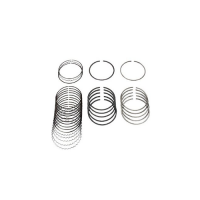 Nissan 12033-VK520 Piston Ring Kit