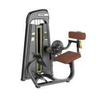 SPORTS LINKS 1031 BACK EXTENSION STRENGTH EQUIPMENTS