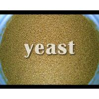 DANEM INTERNATIONAL YEAST (CHEMICAL DIVISION)