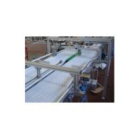 Air System Flexlink Aluminum Flexible Conveyors_3