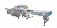 Line for vertical filling of products on conveyor belt