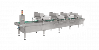 Line For Vertical Filling Of Products In Pans
