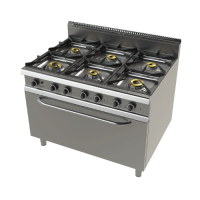 Model 9601fct gas stoves