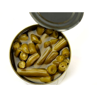 Canned Cut Green Beans