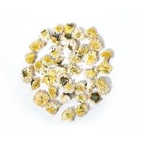 White Chrysanthemum SC4016