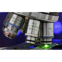 Nis elements hc microscope imaging software