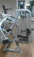 biceps/ triceps machine