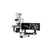 A1R-MP+ Multiphoton Confocal