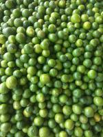 Green valley lemon