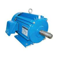 Tim-1f three phase 82 series industrial motors