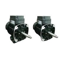 PM3100077 72 & 75 Series FLANGE NEMA STANDARD POOL & SPA PUMP MOTORS